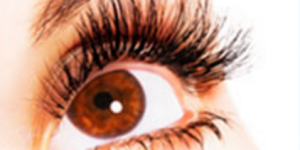 Luscious Lashes....For Life!